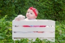 Baby_portraits_6_months_girl_Tampa_Stephaniellen_photography